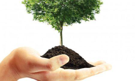 5 јуни - Светски ден на животната средина