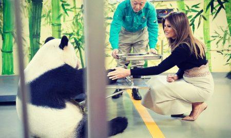 Првата дама на САД воодушевена од пандата Гу Гу