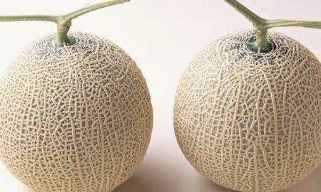 Две дињи продадени во Јапонија за цена од над 25.000 евра (ВИДЕО)